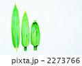 笹舟 2273766