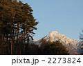 八ヶ岳の冬景色 2273824
