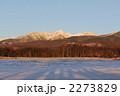 八ヶ岳の冬景色 2273829