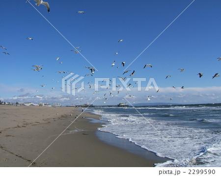 サンタモニカ海岸 2299590