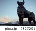 ニュージーランド/テカポ 2327251
