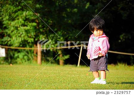 芝生でポーズ 2329757