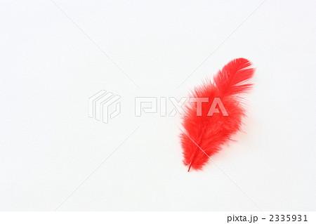 赤い羽根 2335931