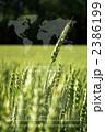 世界食料戦争 2386199