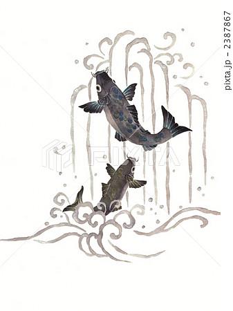 鯉の滝登り 2387867