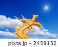 辰 干支 ドラゴンの写真 2459132
