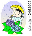 雨降り 梅雨時 雨のイラスト 2468902