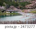 湖沼 丹野池 池の写真 2473277