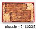鰻重 うなぎの蒲焼き うなぎ蒲焼きの写真 2480225