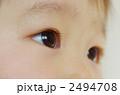 男の子 幼児 眼差しの写真 2494708