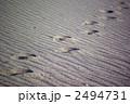 砂紋のある砂浜の足跡 2494731