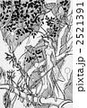 植物世界 2521391