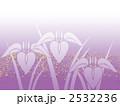 あやめ 菖蒲 植物のイラスト 2532236