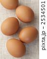 赤玉子 生卵 鶏卵の写真 2534501