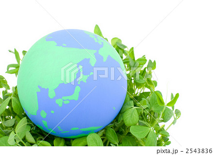 地球と新芽 2543836