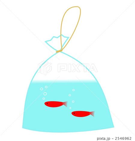 金魚すくい 2546962