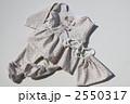 幼児のパンツルック 2550317
