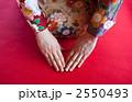 和服 振り袖 三つ指の写真 2550493