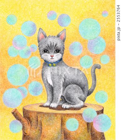 切り株の上の猫 2553764