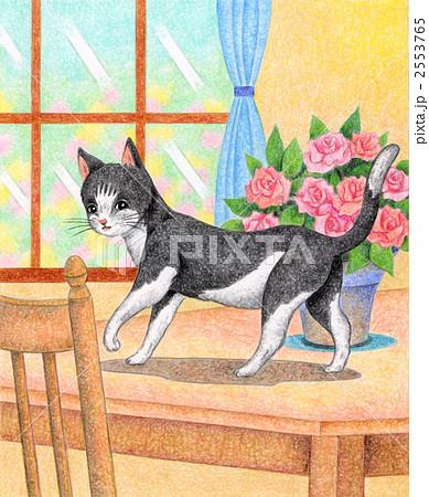 テーブルの上の猫 2553765