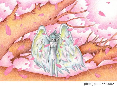 桜の木の住人 2553802