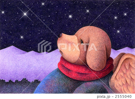 満天の星 2555040