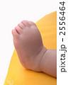 赤ちゃんの足先 2556464