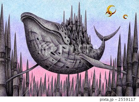 鯨城 2559117