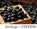 丹波黒大豆 黒大豆 丹波黒の写真 2563840