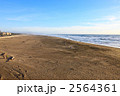 サンフランシスコのポイントロボス海岸 2564361