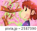 桜の妖精 2587390