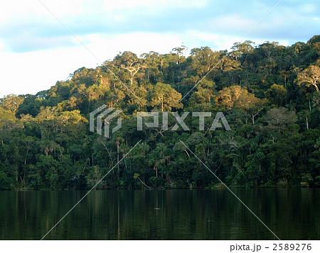 アマゾン上流のジャングルと湖2 2589276