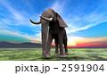 陸の哺乳類 アフリカゾウ 象のイラスト 2591904