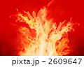 炎 2609647