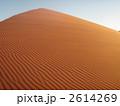 ナミブ砂漠 風紋 砂漠の写真 2614269