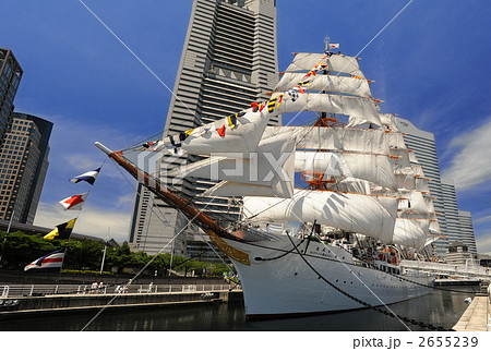 帆船日本丸の総帆展帆 2655239