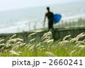 湘南 2660241