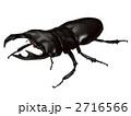 クワガタ虫 2716566