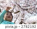 お花見 2782192