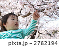 お花見 2782194