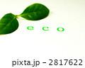 ECO エコ 緑の葉の写真 2817622