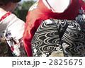 舞妓 2825675