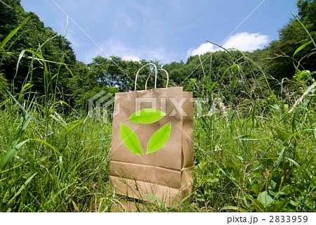 緑の中の紙袋 2833959