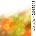 秋イメージ~錦秋の光 2845943