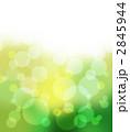 若葉の光、新緑の風 2845944