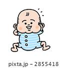 笑顔の赤ちゃん 2855418