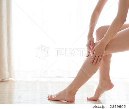 女性の脚 2859606