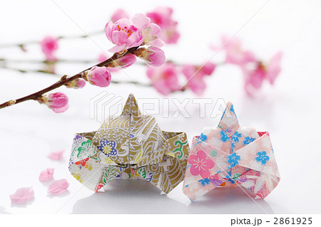 折り紙の雛人形と花桃の写真 ... : 雛人形 折り紙 : 折り紙