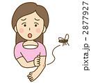 虫刺され 蚊 女性のイラスト 2877927
