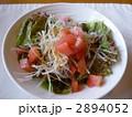 新鮮野菜のサラダ 2894052